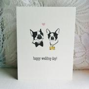 Happy wedding day dogs (1)