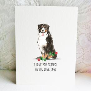 6x6 bernese love