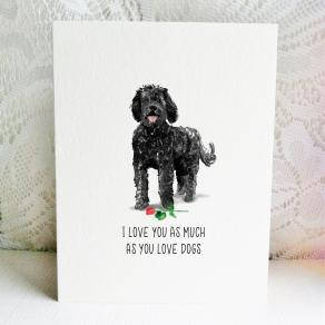 6x6 labradoodle black love