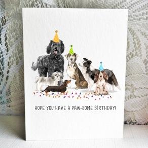 Party Pups - Labradoodle-Shihtzu-Doxie-Catahoula-collie-cocker