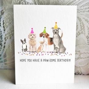 Party Pups - Boston Cockapoo Chihuahua Beagle Pitbull