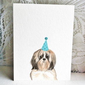 Shih Tzu Long Hair